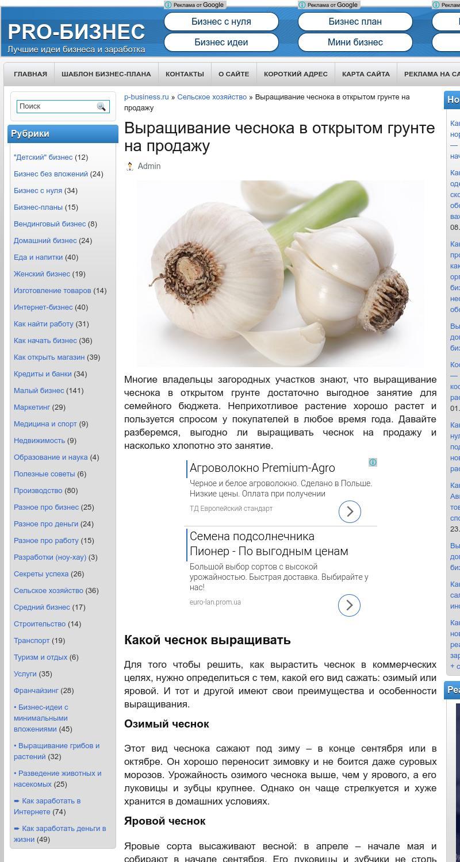 Бизнес идеи выращивание чеснока 56